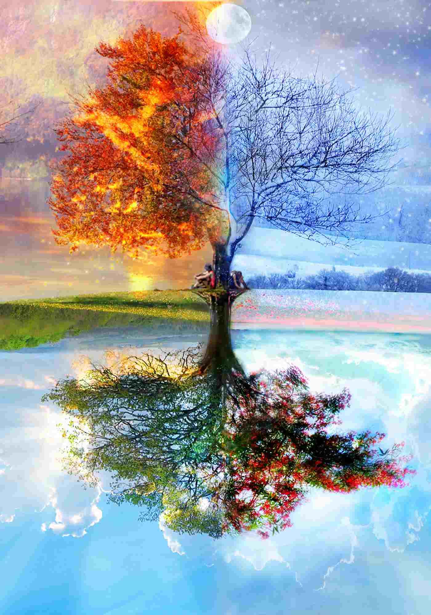 Il profumo delle  stagioni